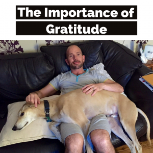 CM Learning Blog | The Importance of Gratitude